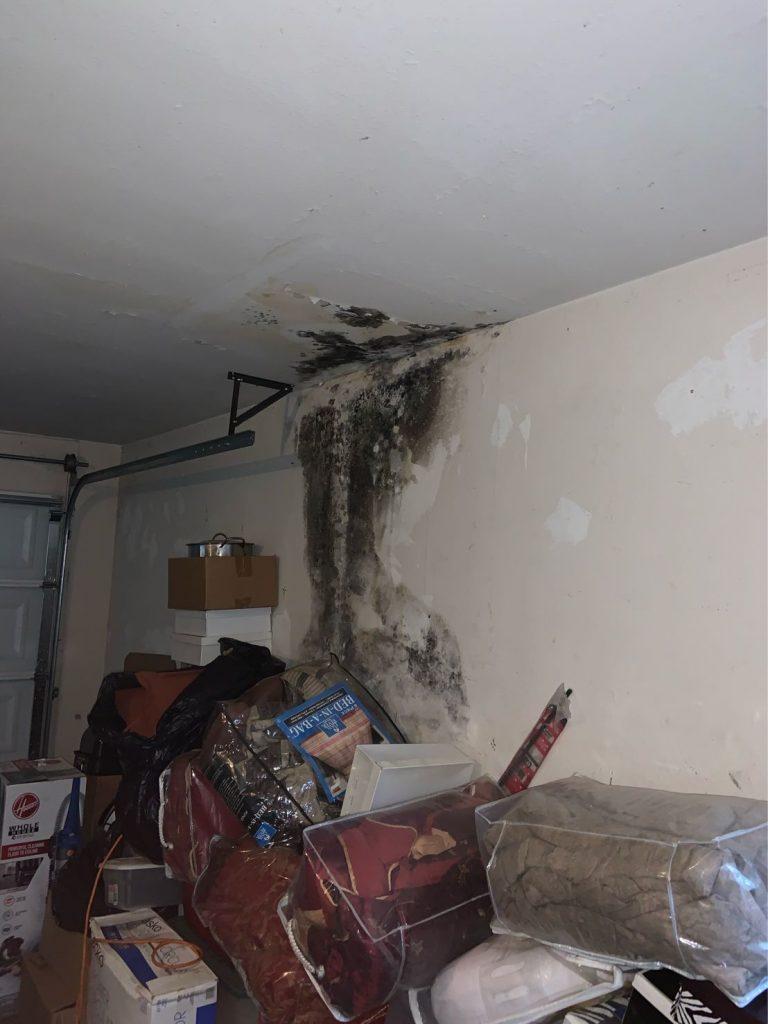 innovaiton plumbing leak damage repair 5